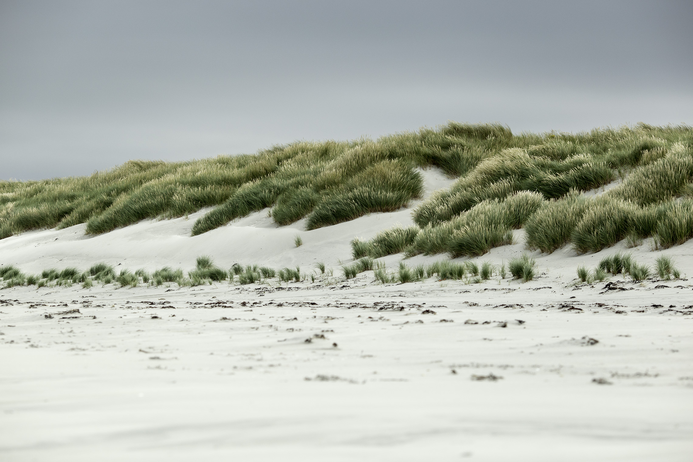 sand dunes and beach in scotland